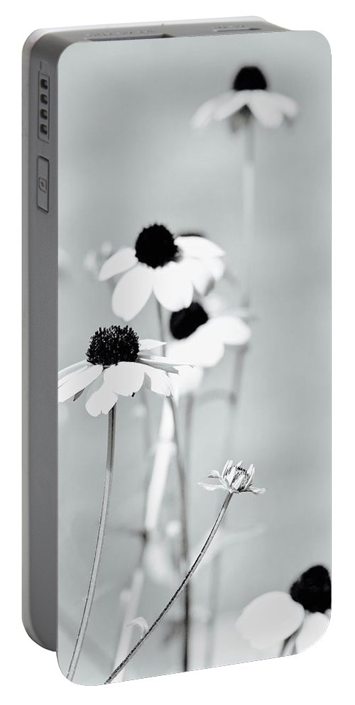 Wildflowers Portable Battery Charger featuring the photograph Spring Flowers by Shelly John