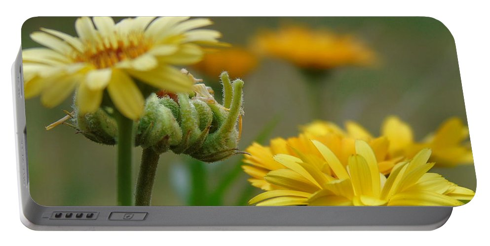 Spring Portable Battery Charger featuring the photograph Spring Flowers by Yohana Negusse