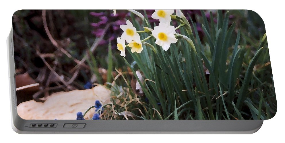 Flowers Portable Battery Charger featuring the photograph Spring Garden by Steve Karol
