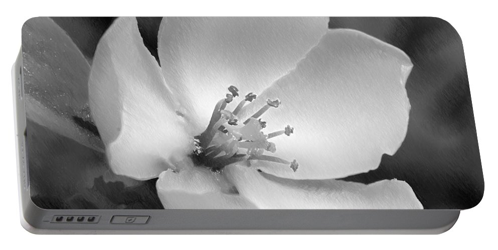 Wood Portable Battery Charger featuring the painting Spring - Id 16235-142734-6855 by S Lurk