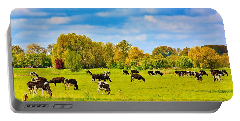 Holland Portable Battery Charger featuring the photograph Spring In Holland-1 by Casper Cammeraat