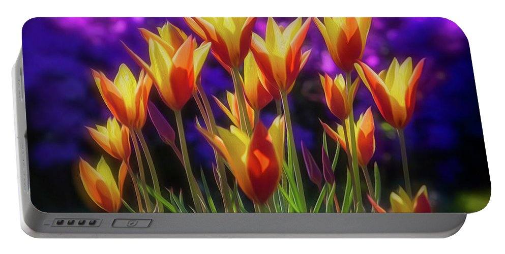 Oakland Cemetery Portable Battery Charger featuring the photograph Spring Is Here by Doug Sturgess