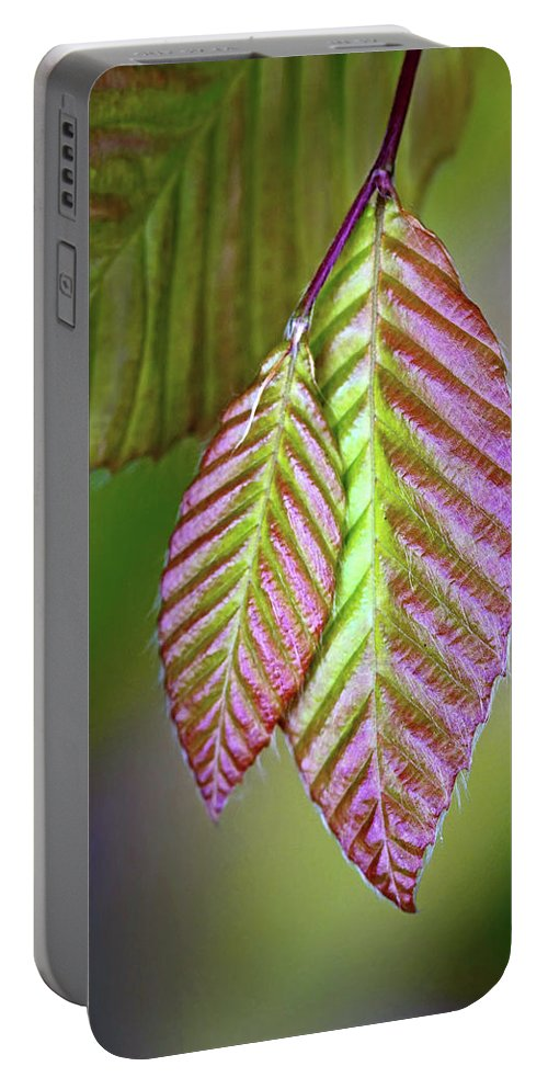 Spring Portable Battery Charger featuring the photograph Spring Leaves by Carolyn Derstine