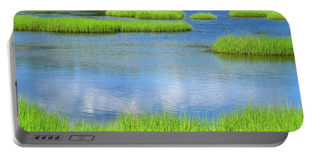 Water Portable Battery Charger featuring the photograph Spring Marsh Grasses by Sybil Staples