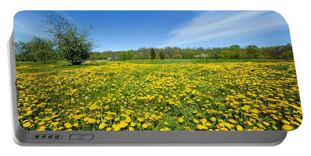 Spring Portable Battery Charger featuring the photograph Spring Meadow Full Of Dandelions Flowers And Green Grass by Michal Bednarek