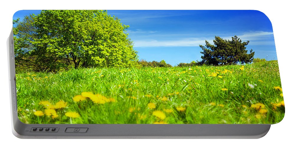 Countryside Portable Battery Charger featuring the photograph Spring Meadow With Green Grass by Michal Bednarek