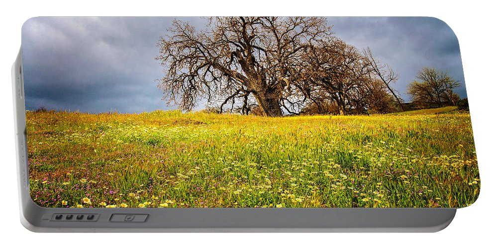 Spring Portable Battery Charger featuring the photograph Spring Oak Tree And Wildflowers by Lynn Bauer