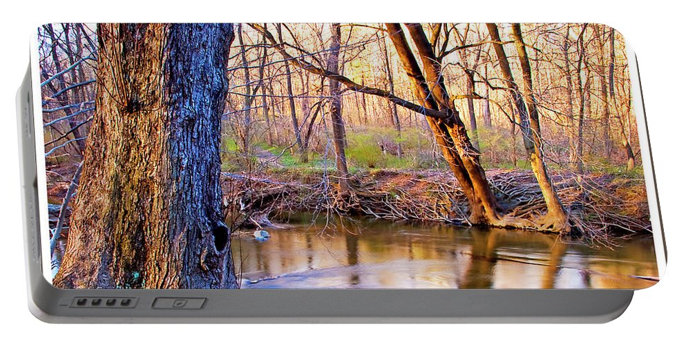 Seasons Portable Battery Charger featuring the photograph Spring, Pennypack Creek, Pennsylvania by A Gurmankin