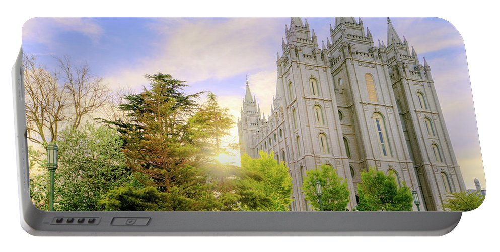 Salt Lake Portable Battery Charger featuring the photograph Spring Rest by Chad Dutson
