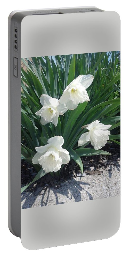 Landscape Portable Battery Charger featuring the photograph Spring Time Trumpets by Derrell Simpson