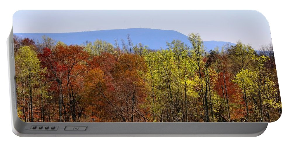 Trees Portable Battery Charger featuring the photograph Spring Woods by Kathryn Meyer
