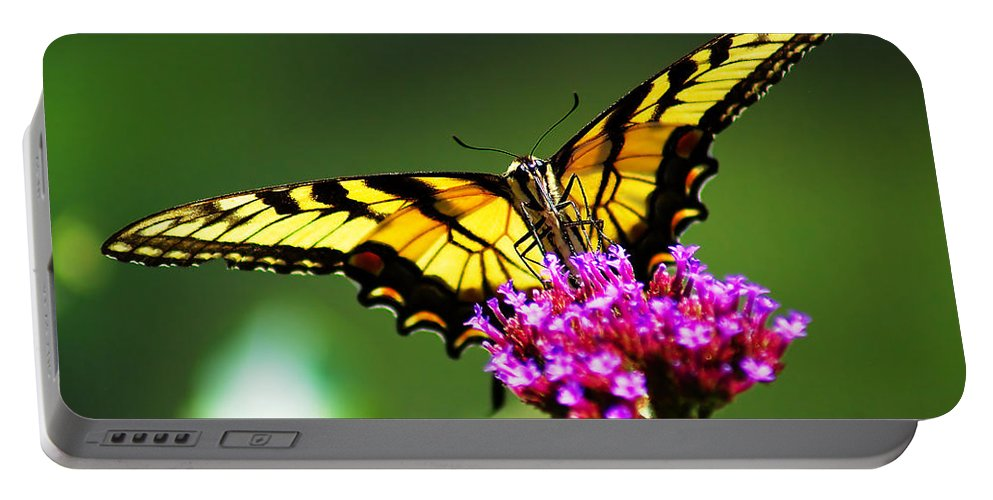 Beautiful Portable Battery Charger featuring the photograph Springtime Butterfly by Nick Zelinsky
