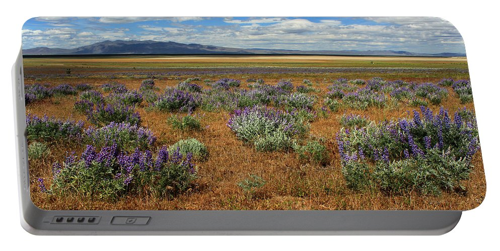 Landscape Portable Battery Charger featuring the photograph Springtime In Honey Lake Valley by James Eddy