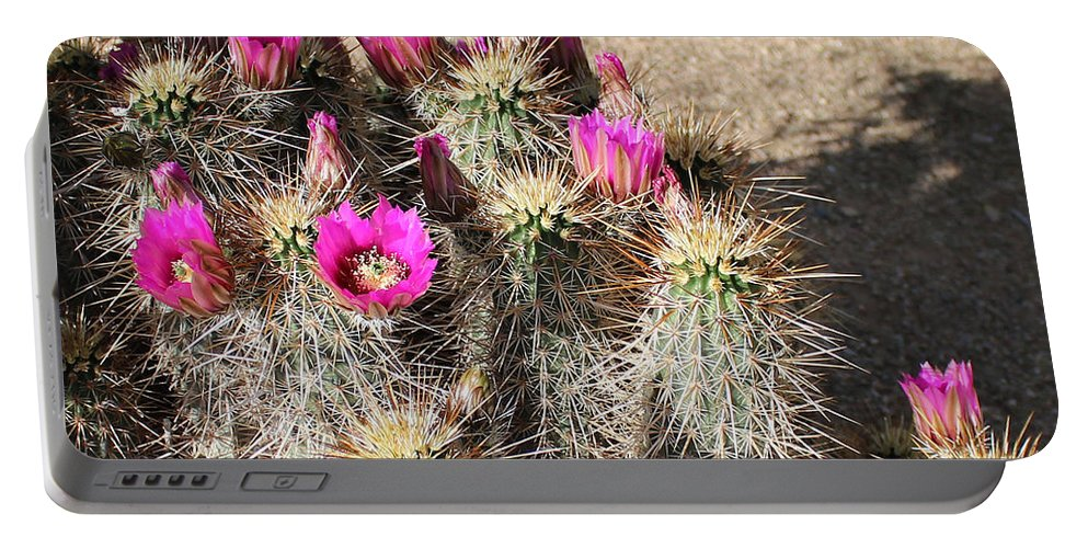 Flowers Portable Battery Charger featuring the photograph Springtime In The Desert by Lorraine Baum