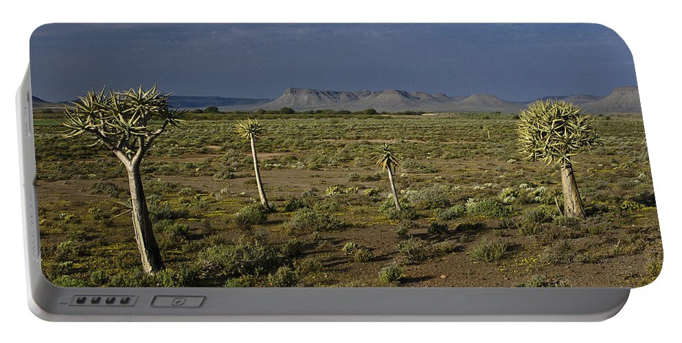 Africa Portable Battery Charger featuring the photograph Springtime In The Western Cape by Michele Burgess