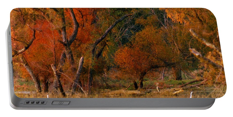 Landscape Portable Battery Charger featuring the photograph Squaw Creek Egrets by Steve Karol