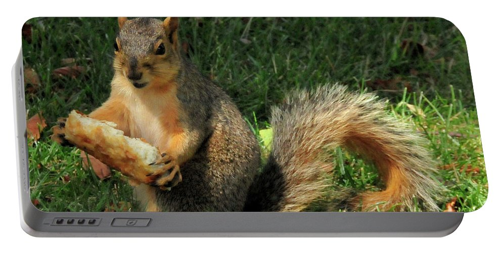 Squirrel Portable Battery Charger featuring the photograph Squirrel Eating Pizza by David Arment