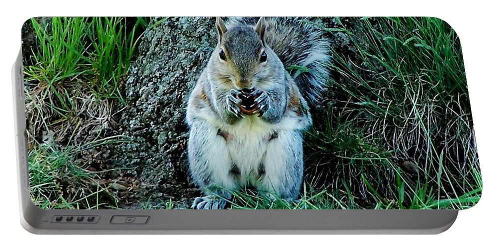 Squirrel Portable Battery Charger featuring the photograph Squirrel Friend by Eileen Brymer