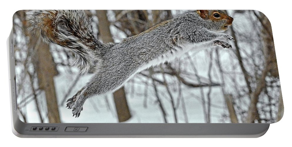 Squirrel Portable Battery Charger featuring the photograph Squirrel Tail, Curved Tail by Asbed Iskedjian