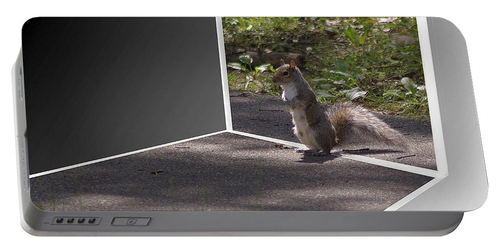 2d Portable Battery Charger featuring the photograph Squirrel World by Brian Wallace