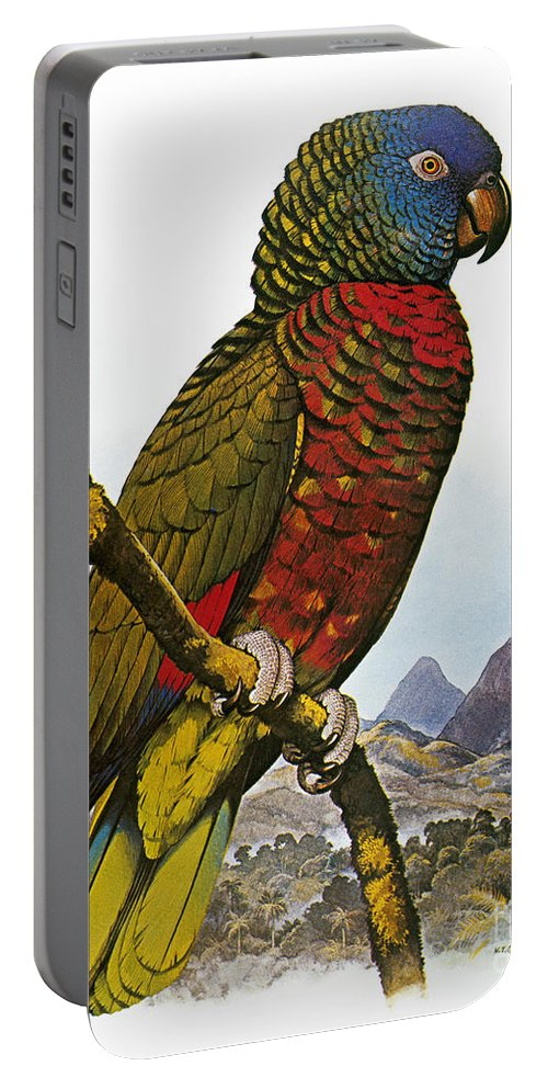 Amazon Portable Battery Charger featuring the photograph St Lucia Amazon Parrot by Granger