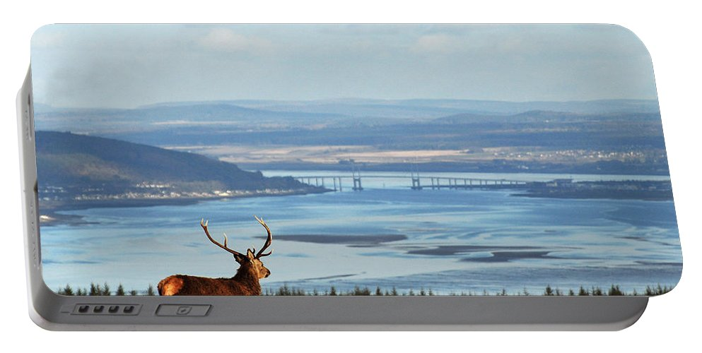 Red Deer Stag Portable Battery Charger featuring the photograph Stag Overlooking The Beauly Firth And Inverness by Gavin Macrae