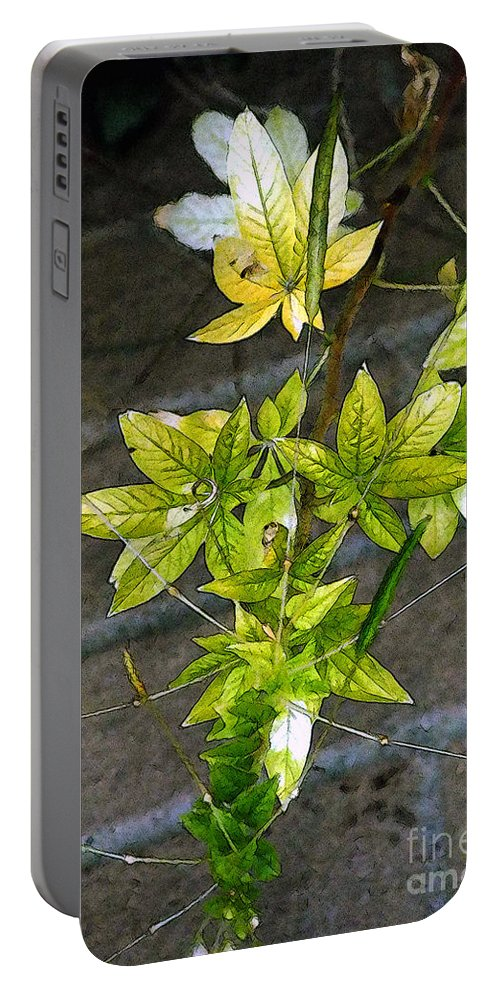 Autumn Portable Battery Charger featuring the painting Stalk With Seed Pods by RC DeWinter