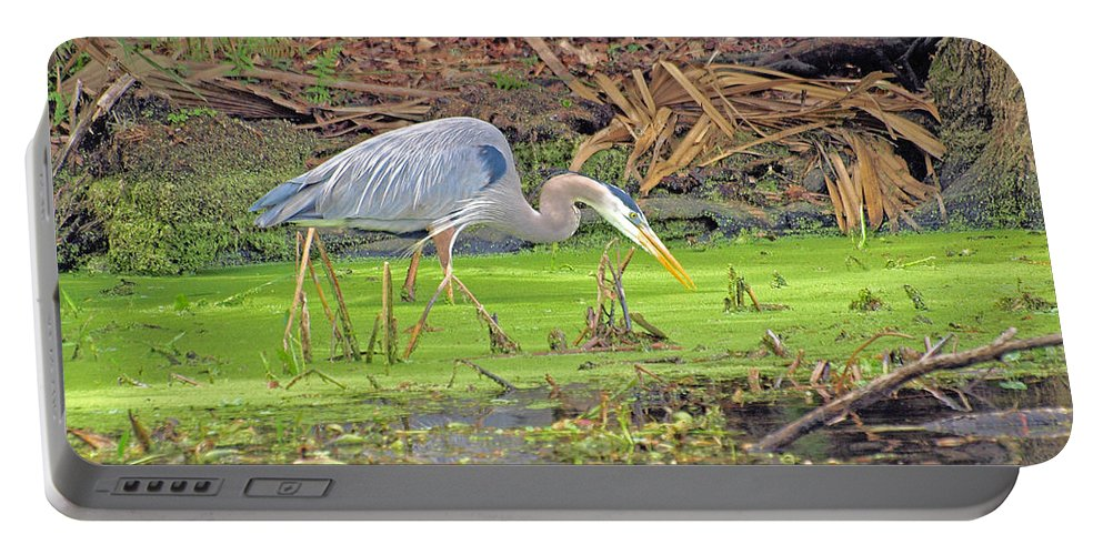 Marine Life Portable Battery Charger featuring the photograph Stalking Blue by Terrie Stickle