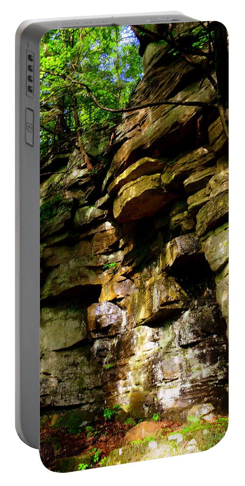 Stand In Amazement Portable Battery Charger featuring the photograph Stand In Amazement by Lisa Wooten