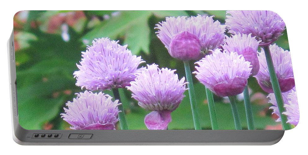 Flower Portable Battery Charger featuring the photograph Stand Tall by Ian MacDonald