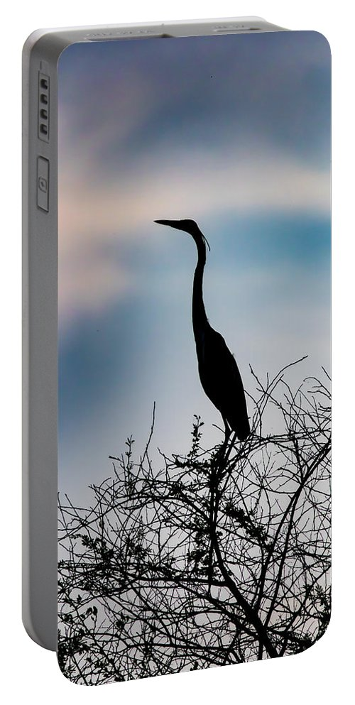 Silhouette Portable Battery Charger featuring the photograph Standing High - Silhouette by Ramabhadran Thirupattur