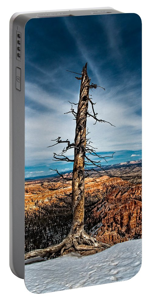 Art Portable Battery Charger featuring the photograph Standing Regardless by Christopher Holmes