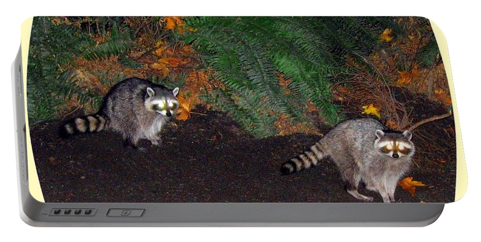 Raccoons Portable Battery Charger featuring the photograph Stanley Park Rascals by Will Borden