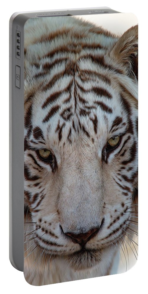 Animal Portable Battery Charger featuring the photograph Stare Down by Teresa Wilson