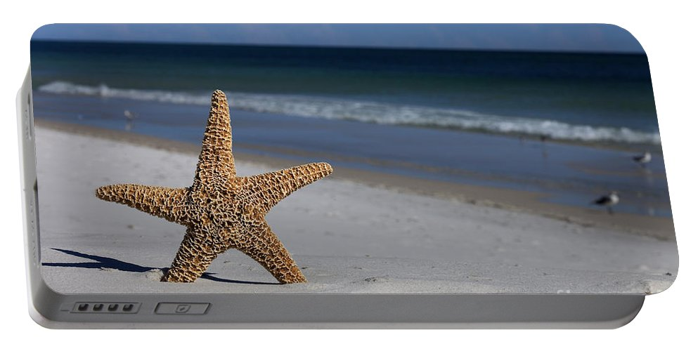 Starfish Portable Battery Charger featuring the photograph Starfish Standing On The Beach by Anthony Totah