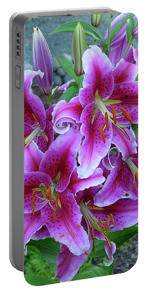 Group Portable Battery Charger featuring the photograph Stargazer Lily by Shirley Heyn