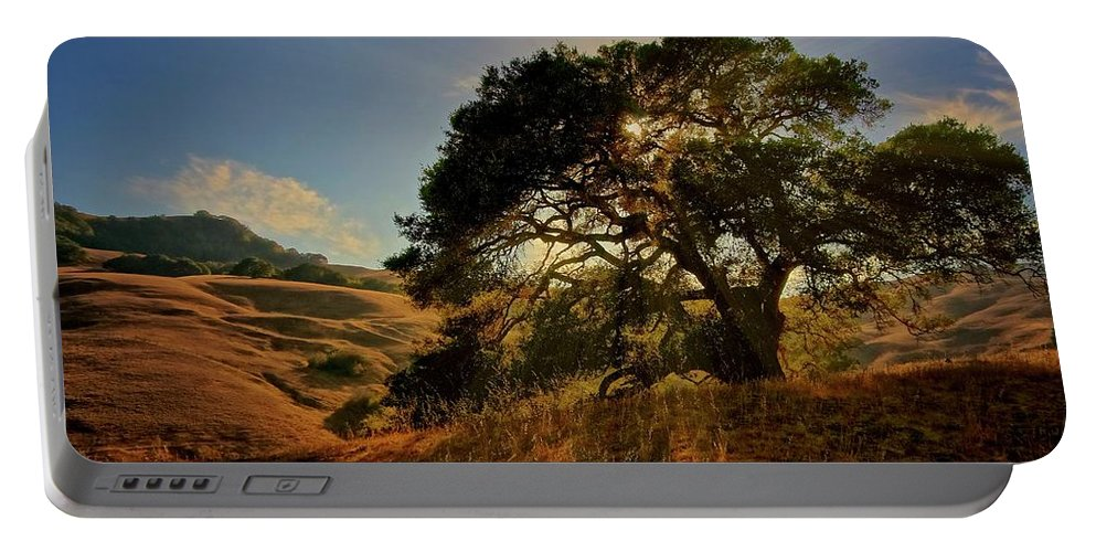 Nature Portable Battery Charger featuring the photograph Starlight, California Oak by Zayne Diamond Photographic