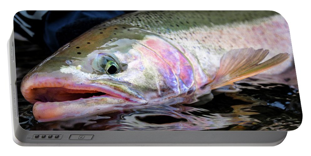 Fishing Portable Battery Charger featuring the photograph Steelhead 3 by Jason Brooks