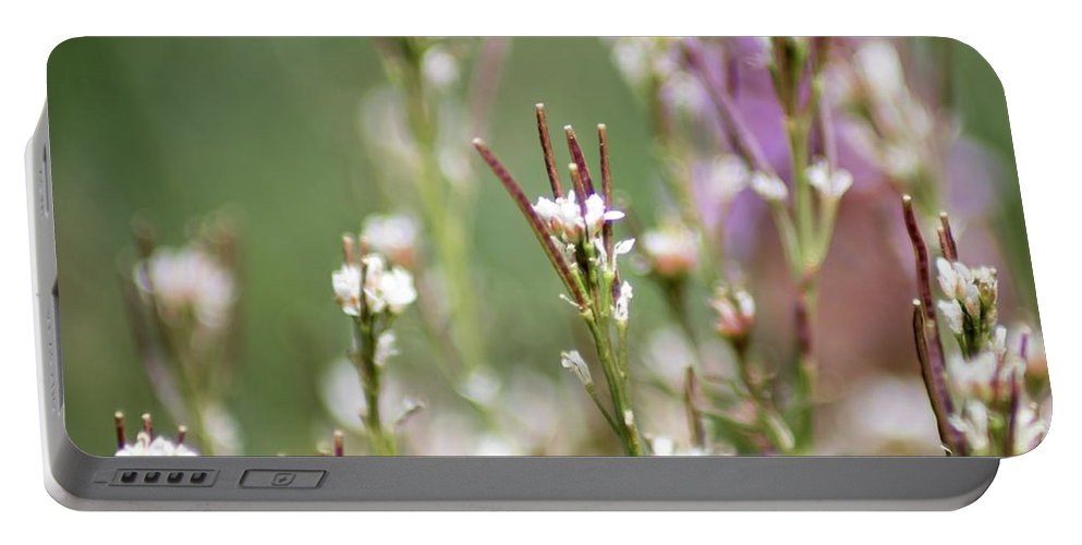 Stick Flowers Portable Battery Charger featuring the photograph Stick Flower by Keith Bowen
