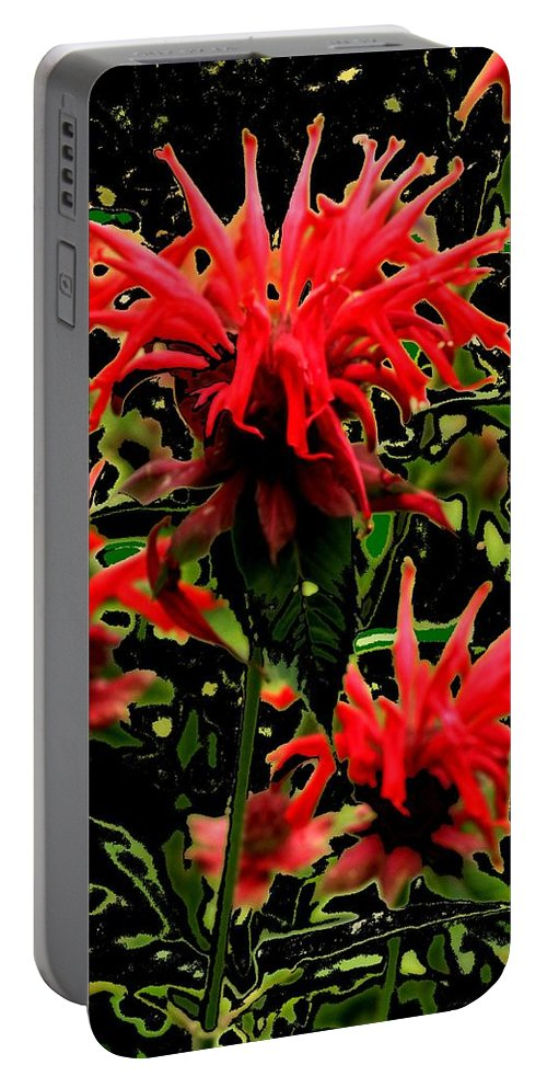 Abstract Portable Battery Charger featuring the photograph Strange Garden by Ian MacDonald