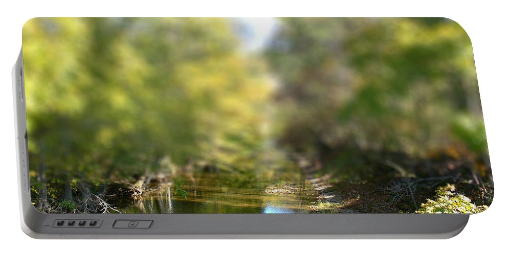 Tn Portable Battery Charger featuring the photograph Stream Reflections by Ericamaxine Price