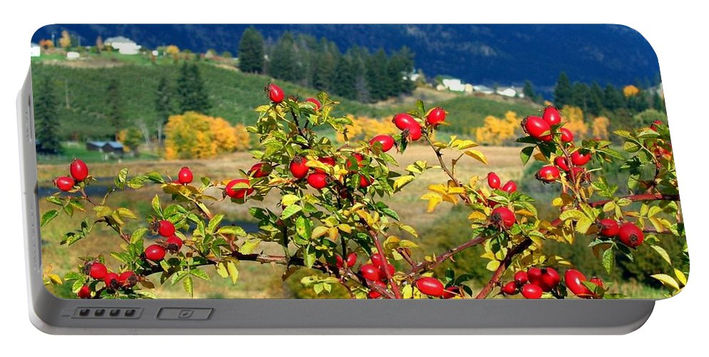 Autumn Portable Battery Charger featuring the photograph Striking Autumn Red by Will Borden