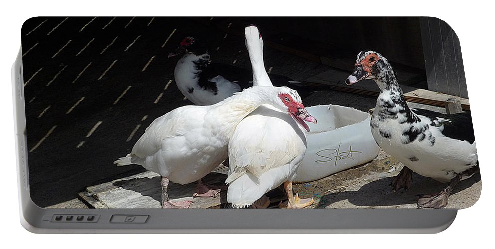 Ducks Portable Battery Charger featuring the photograph Stubbs On Lanzarote by Charles Stuart