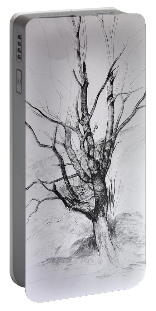 Landscape Portable Battery Charger featuring the drawing Study Of A Tree by Harry Robertson