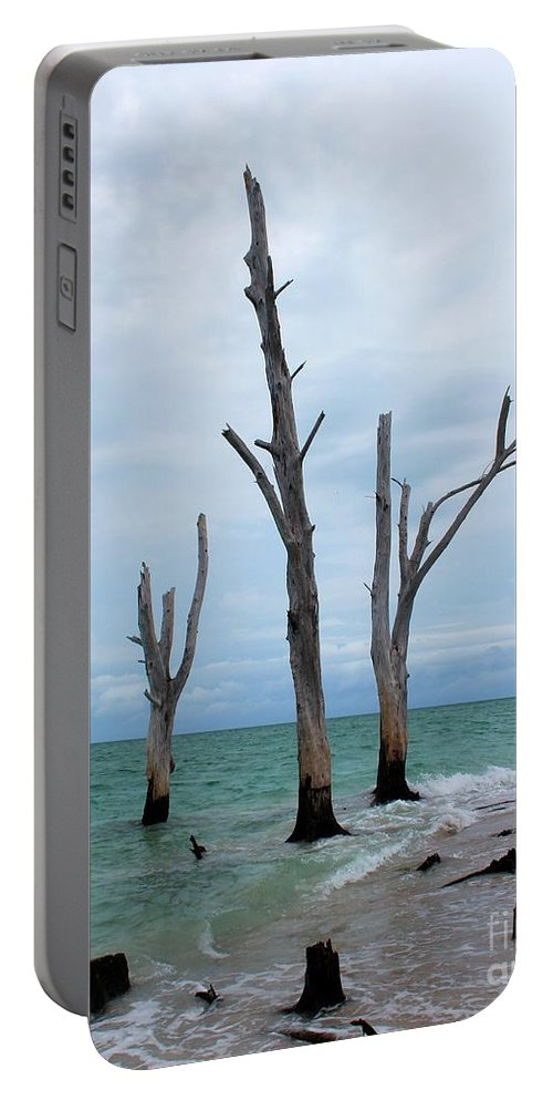 Photo For Sale Portable Battery Charger featuring the photograph Stump Pass Triplets by Robert Wilder Jr