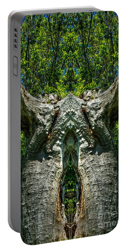 Abstract Portable Battery Charger featuring the photograph Stumped by Roger Monahan