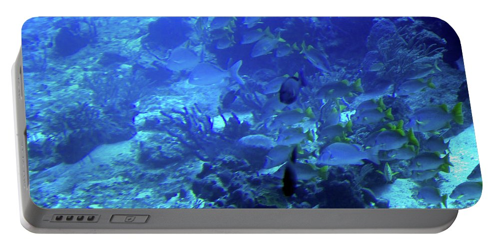 Underwater Portable Battery Charger featuring the photograph Submarine Underwater View by Tatiana Travelways