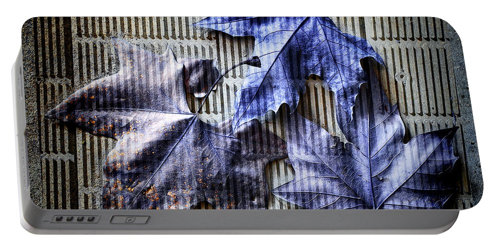 Autumn Portable Battery Charger featuring the photograph Subtexture by Wayne Sherriff
