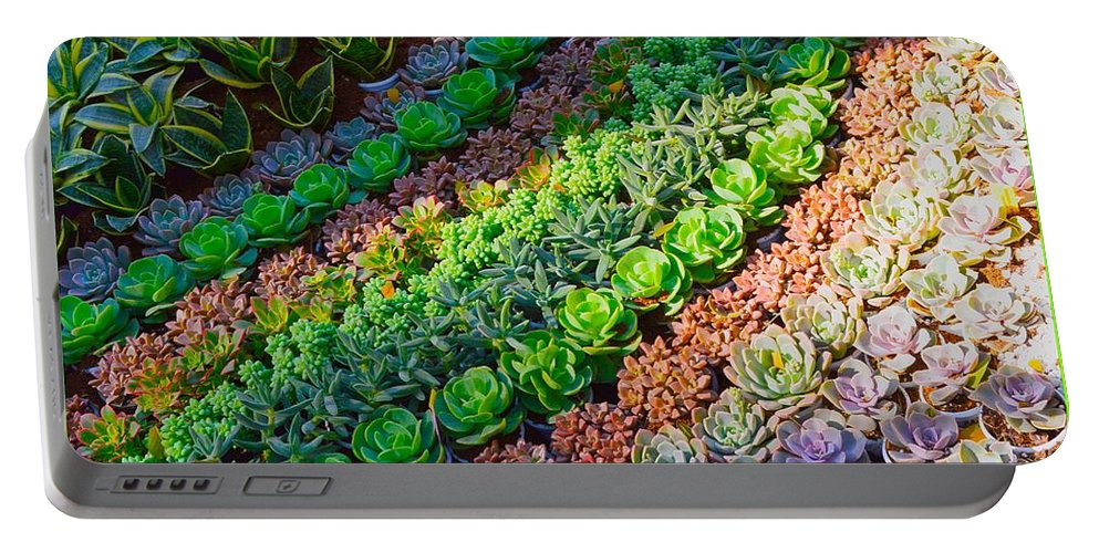 Succulent Portable Battery Charger featuring the photograph Succulent 1 by Sonali Gangane