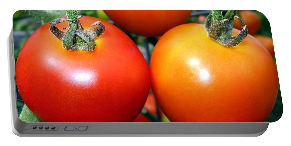 Tomatoes Portable Battery Charger featuring the photograph Succulent Tomatoes by Will Borden